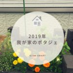 【家庭菜園】2019年我が家のポタジェ*ハーブと野菜とお花