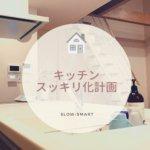 【ラクシーナ】キッチン収納スッキリ化計画シンク編(スポンジ・洗剤置き場)